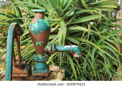 Ancient water faucet with a pomp on the backdrop of a bush of aloe