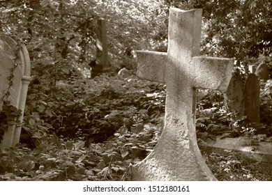 An ancient weathered gravestone cross in an overgrown cemetary