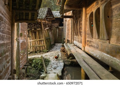 The ancient wooden granary in Deng'cen village, Guizhou province, China. Deng'cen has more than a hundred granary storing tons of rice. The granary is built above water to avoid fire and pests.