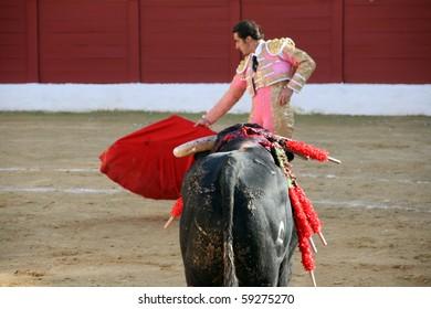 "ANDALUCIA - OCTOBER 17: ""Corrida"" (bullfight) of bulls, typical Spanish tradition where a torero (bullfighter) kills a bull. In the picture, David Fandita ""El Fandi"" October 17, 2010 in Andalucia."