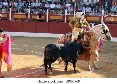 "ANDALUCIA - OCTOBER 17: ""Picador"", horsemen in a Spanish bullfight who jabs the bull with a lance October 17, 2010 in Andalucia (Spain)."