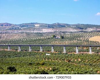 Andalusia landscape, Spain