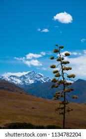 Andean landscape, near Cusco, Peru