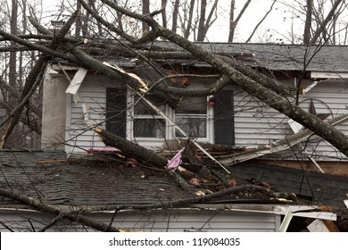 ANDOVER, NJ - OCT 30: A tree lays across the roof of a home after Hurricane Sandy made landfall in the northeast region of the US in Andover, New Jersey on October 30, 2012.