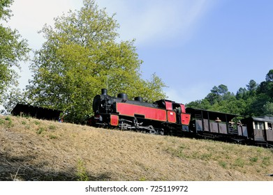 ANDUZE, FRANCE - AUGUST 27: The small steam train of Anduze passing in the park of the bamboo plantation of Anduze being in the French department of Gard, august 27, 2017.