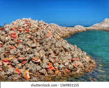 Anegada Conch Shell Mounds