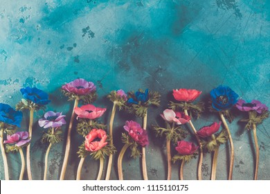 Anemones flowers on stone background