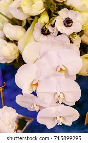 anemones with orchids, flowers