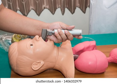 Anesthesiologist performing an orotracheal intubation on a simulation, Medical manipulation. mannequin dummy during medical training to control of the airway.