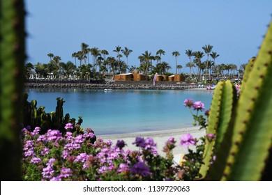 Anfi fel Mst beach, Island of Gran Canaria, Spain