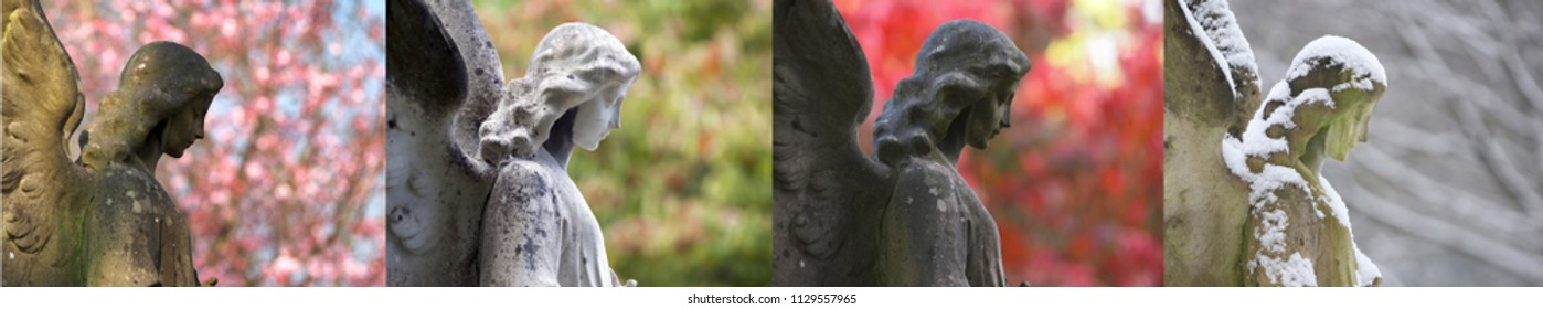 Angel at a cemetery during all seasons
