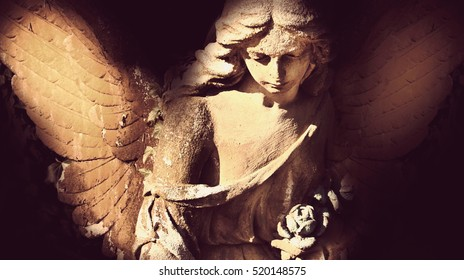 angel in the sunlight (antique statue)