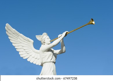Angel trumpeter isolated against clear blue sky