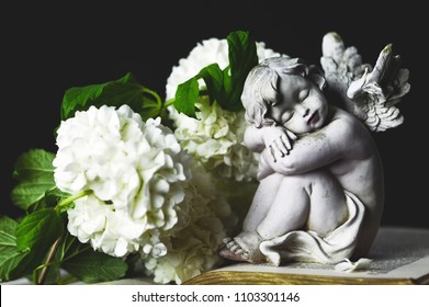 Angel and white flowers on dark background