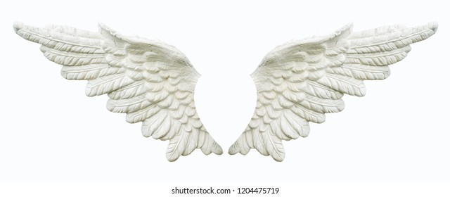Angel wing isolated.