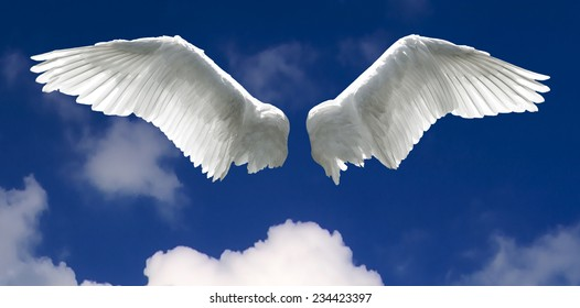 Angel wings with background made of sky and clouds.
