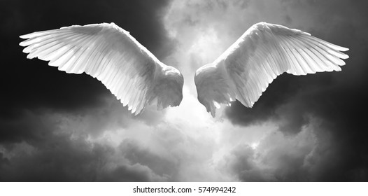 Angel wings with background made of stormy sky and clouds in black and white colors.