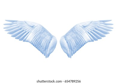 Angel wings, Natural blue wing plumage with clipping part on white background