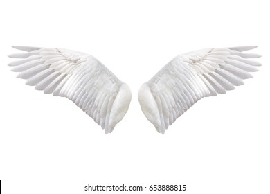 Angel wings, Natural white wing plumage with clipping part on white background