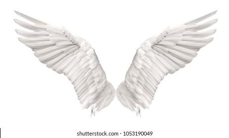 Angel wings swan are flying isolated on white background. This has clipping path.