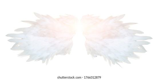 Angel's white wings isolation on white background
