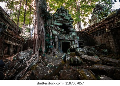 Angkor Archaeological Site, Ta Phrom Temple