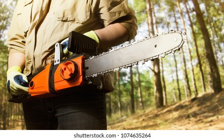 Angle view photo of a worker in outfit standning with chainsaw on daylight forest background.