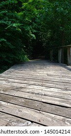 Angled wooden walkway disappearing into the tress