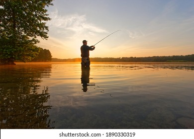 angler catching the fish during summer sunrise