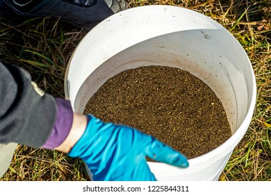 Angler gloves sifts the bait through the sieve into the bucket. The concept of preparing the bait to attract fish to the place of fishing.