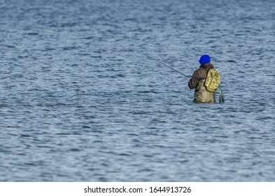 ANGLER - Hunting fish with a fishing rod in the water