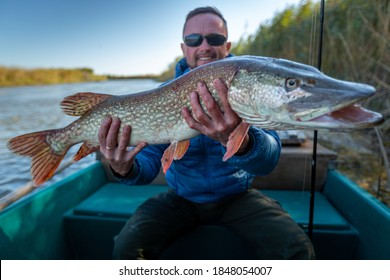 Angler with pike fish. Amateur fisherman holds trophy pike (Esox lucius) and sits in the boat with river on the background