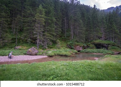 Angler sneaking up to a promising looking pool in the Swiss Alps. The river runs through meadows and next to coniferous trees and has a distinct red gravel bed and greenish colour