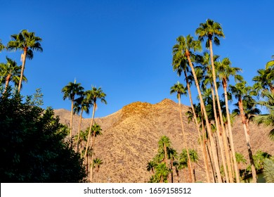 Angles from Palm Springs, California,