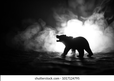 Angry bear behind the fire cloudy sky. The silhouette of a bear in foggy forest dark background