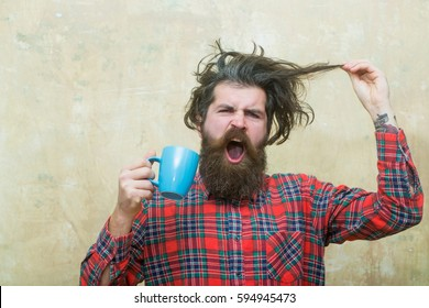 Angry bearded man, caucasian hipster, with long beard and moustache holding stylish fringe hair, haircut, and blue cup in red plaid shirt on abstract pink wall background