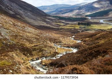 Angus, Aberdeenshire, Scotland, UK.