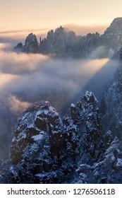 Anhui Huangshan Snow Beauty