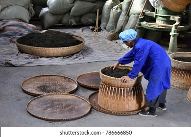 ANHUI PROVINCE, CHINA – CIRCA OCTOBER 2017: A man working inside a tea factory with the big wicker baskets, where si the famous black tea Liu An drying.