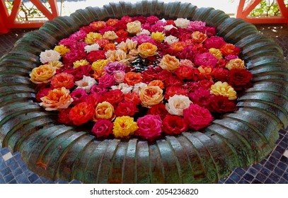 Anima, Andre Heller's imaginative botanical garden, Marrakech, Morocco. Water basin filled with fragrant colorful roses.