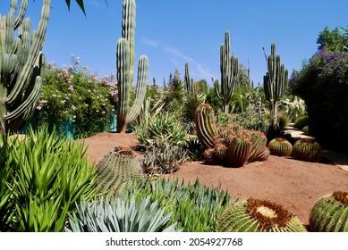 Anima, Andre Heller's imaginative botanical garden in Marrakech, Morocco. High quality photo