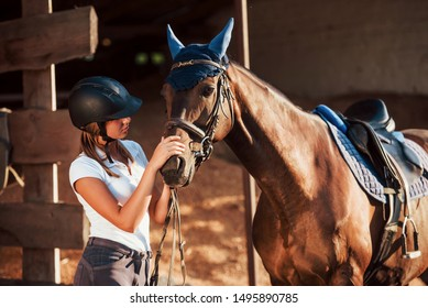 Animal is in blue clothes. Horsewoman in uniform and black protective helmet with her horse.