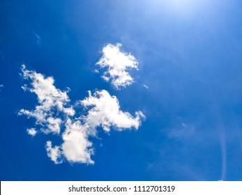 Animal cloud look like mongkey.