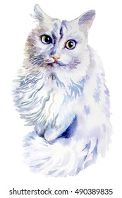 animal collection: Cat. Watercolor illustration