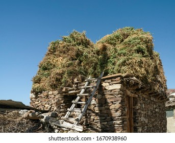Animal enclosure constructed from dry stone walling with fodder drying on roof under brilliant blue sky in summer in Nako, Himachal Pradesh, India.