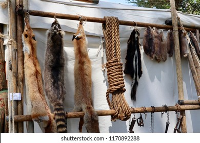 animal furs on a trading post tent during a civil war reenactment