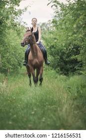 Animal, horsemanship concept. Young woman ridding on a horse through garden on sunny spring day