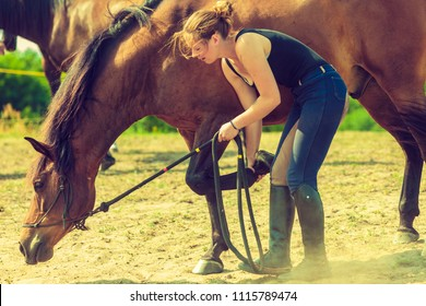Animal and human love, equine concept. Jockey woman taking care of horse
