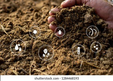 Animal manure or manure in the hands of the farmer and the icon technology about the composting of compost.