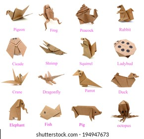 Animal of origami paper collection